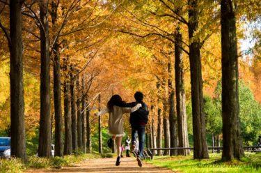 地元カメラマンが教える☆観光情報サイトに載っていない金沢周辺の穴場紅葉スポット7つ
