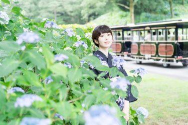 【6月20日】太閤山ランドあじさい祭りで着物レンタルのKIPPOさんとコラボ撮影を行います