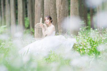 石川県周辺での結婚式前撮り・フォトウェディングもお待ちしております。